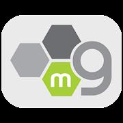 mGeld - GenesisGroup