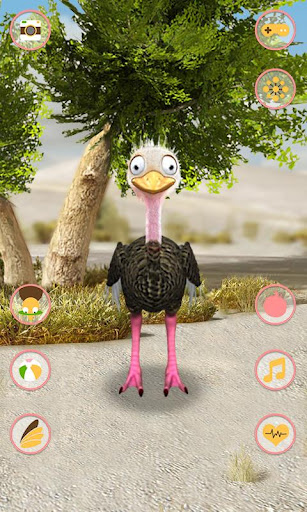 說話的鴕鳥免費