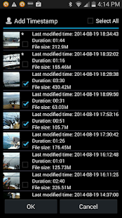 Video Timestamp Add-on Screenshot