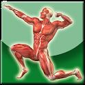 Anatomi Tubuh Manusia icon