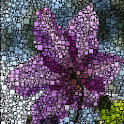 Growing Mosaic Lite icon