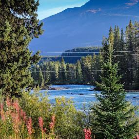 Fresh by Edwin Montgomery - City,  Street & Park  Vistas ( water, wilderness, mountain, park, canadian rockies 1 bike bicycle tour, river )