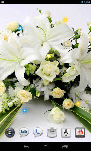 Amazing Lilies HD LWP