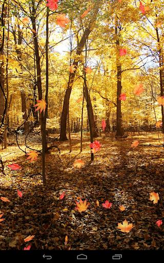 Autumn Wallpaper screenshots 13