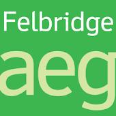 Felbridge FlipFont