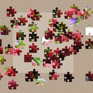 Jigsaw Puzzles 解謎 App Store-癮科技App