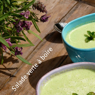 """Green Cold Soup or """"Drinkable Salad""""."""