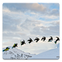 Snowboarders Live Wallpaper logo