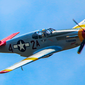 P-51 Mustang Tuskegee by Werner Ennesser - Transportation Airplanes ( aviation, wwii, plane, fly, redtail, p-51 mustang, w r e productions, tuskegee, airshow,  )