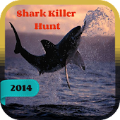 Shark Killer Hunt 2014