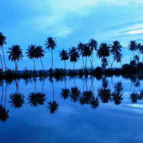 gods own country by Ashutosh Singhvi - Landscapes Travel ( backwaters, dawn, coconut trees, kerala, morning )