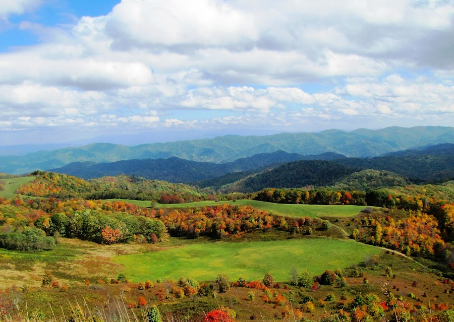 Max Patch View by Teresa Daines - Landscapes Mountains & Hills ( appalachian trail, mountains, autumn, max patch, , renewal, green, trees, forests, nature, natural, scenic, relaxing, meditation, the mood factory, mood, emotions, jade, revive, inspirational, earthly )