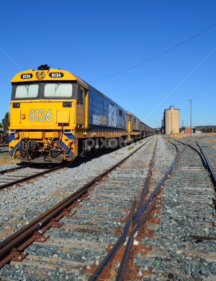Grain Train by Ann Baldock - Transportation Trains ( silos, train, tracks,  )