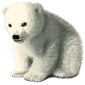 Polar Bear Winter(GO Launcher)