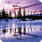 Beautiful Winter Wallpapers icon