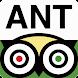 San Antonio City Guide