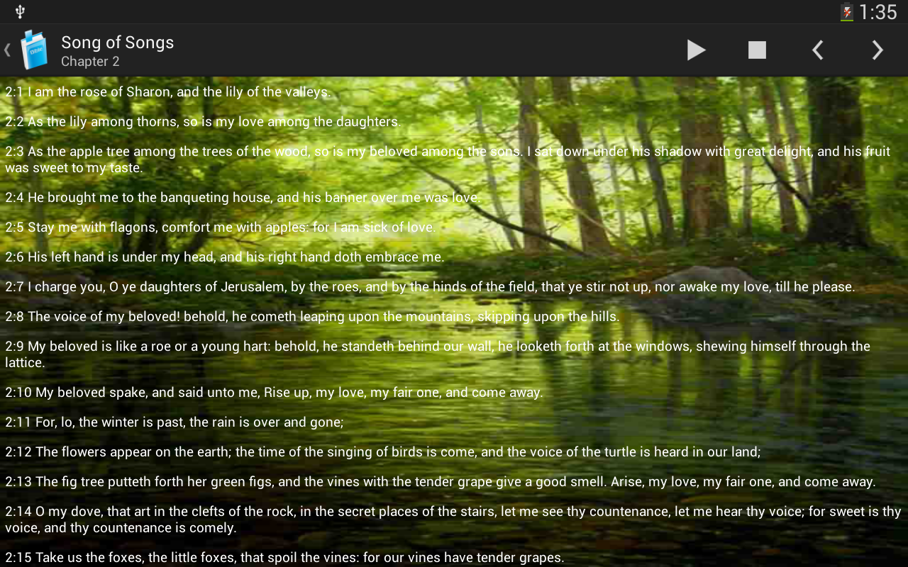 Holy Bible King James Version - screenshot
