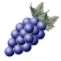 Wine Tracker icon
