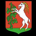 Lublin icon