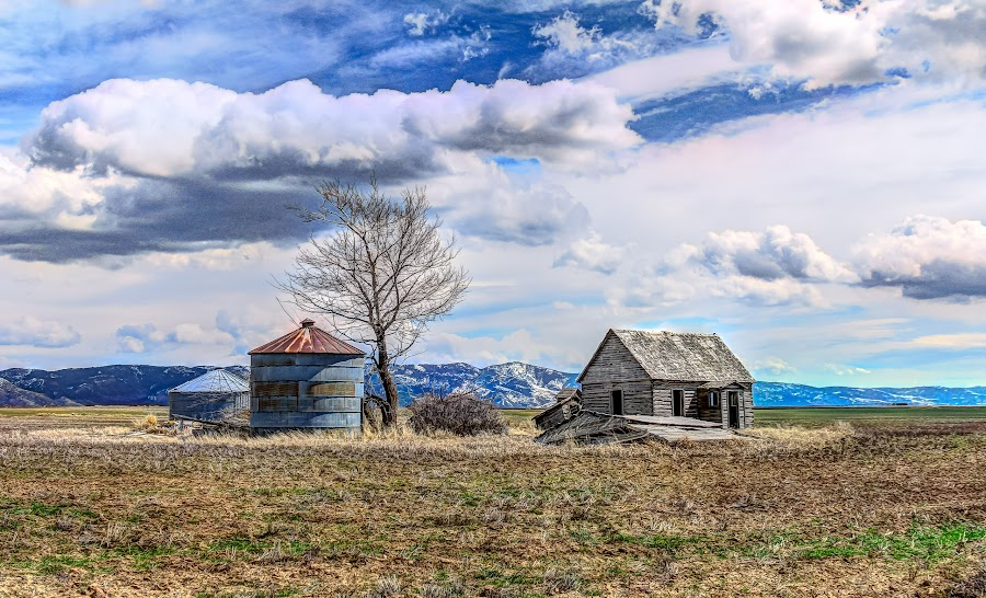 Saving The Past by Jim Moon - Buildings & Architecture Decaying & Abandoned ( cabin, farm land, abandoned cabin, hdr, america, old oregon trail, rocky mountain pass, fine art, jim moon, landscape, usa, id, idaho, whisper river photography, pioneer home, praire, homested )