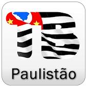 Paulistão 2015