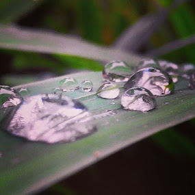 Waterdrops by Rully Kustiwa - Instagram & Mobile Instagram ( instaphoto, instagram, instagramindonesia, ciawi, bogor, indonesia, djuraganutjuphotograffi, lenovo, water, drops )