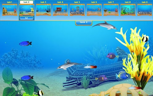 Dolphin Play 2™ - screenshot thumbnail