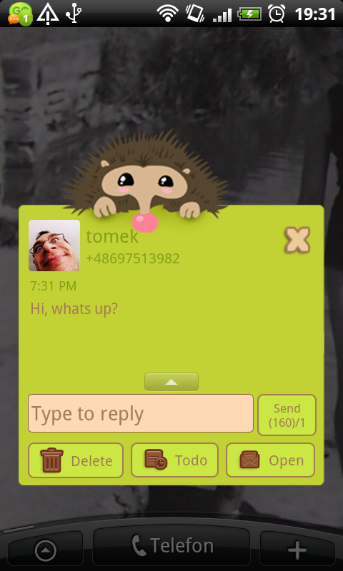 GO SMS Pro Hedgehog Theme- screenshot