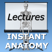 Anatomy Lectures
