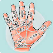 Hast Rekha Palmistry  in Hindi