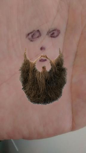 Beard Preview
