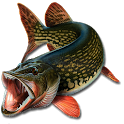 Counter fishing icon
