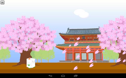 Kyoto Walking with Yudofu-san