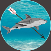 Shark Harcher