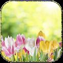 Sunny tulips icon