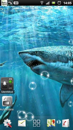 鲨鱼的动态壁纸