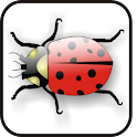 Lady Bug doo-dad logo