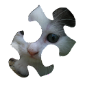 Cats Puzzle HD logo