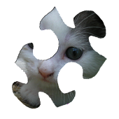 Cats Puzzle HD