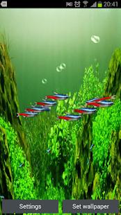 霓虹灯鱼3D动态壁纸