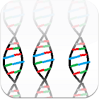 DNA Replication icon