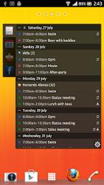 All-in-One Agenda widget Screenshot 2