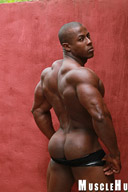 Orso Orfeo - Black Muscle Hunk Is Back