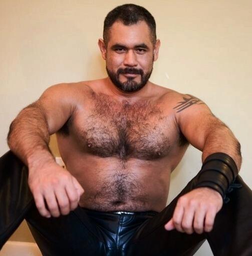 Gay Hairy Muscular Men 12