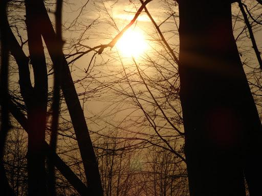 Wiersze Na Wielki Tydzień I Wielkanoc Forum Ludzie Wiersze