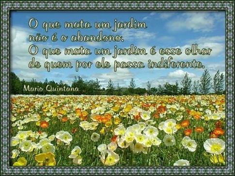 card_marioquintana_2