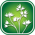 1100 Manitoba Wildflowers icon