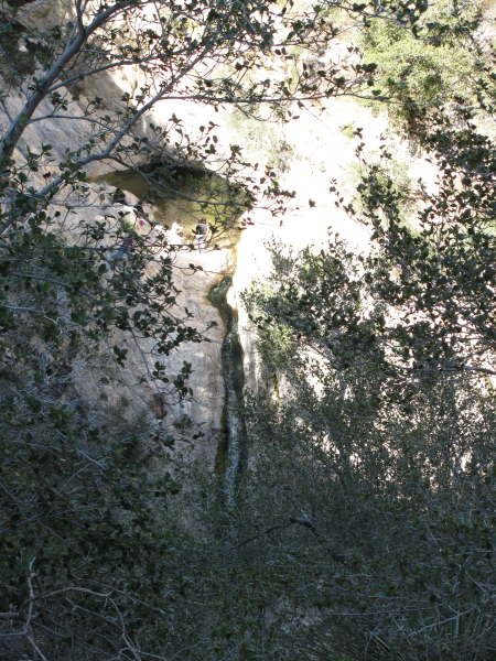 The taller waterfall seen through some branches where it is most clearly seen from the trail.