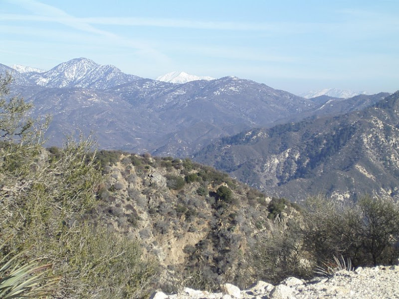 Mount San Antonio, AKA Baldy, in the distance showing off its snow cap.