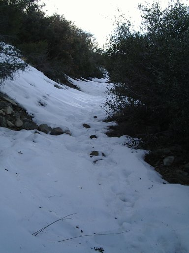 A foot of snow covering a steep portion of the trail for about a hundred feet, with hints that further up has at least as much snow on it.